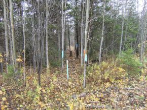 DeLorey Land Survey - Boundary Line