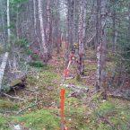 John Delorey Land Surveys - Residental